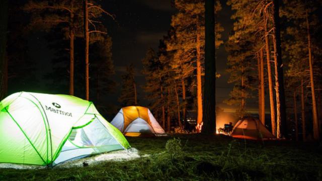 camp8449002