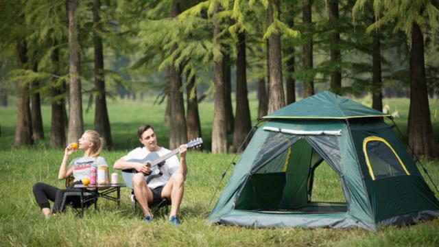 camp842314