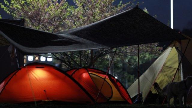 camp65485